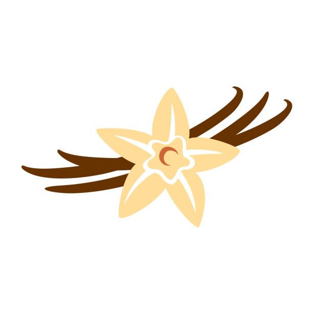 stockillustraties, clipart, cartoons en iconen met vanille bloem met peulen kleur silhouet - vanille
