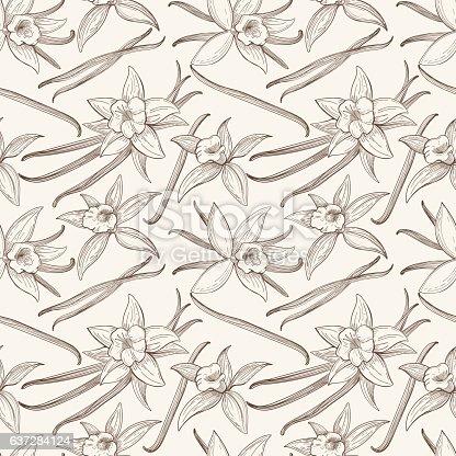 istock Vanilla stick and flower vector hand drawn seamless pattern 637284124