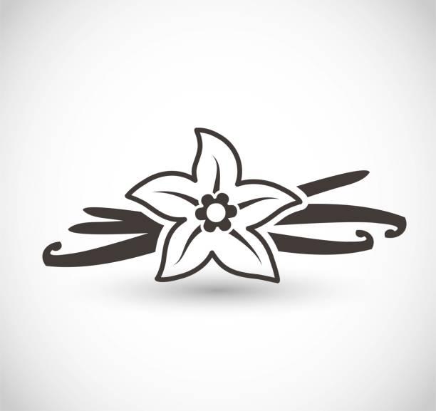stockillustraties, clipart, cartoons en iconen met vanille vector pictogram - vanille