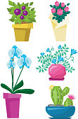 Variety of colorful flowers vector illustration
