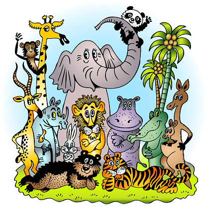 Variety of Exotic Zoo Animals