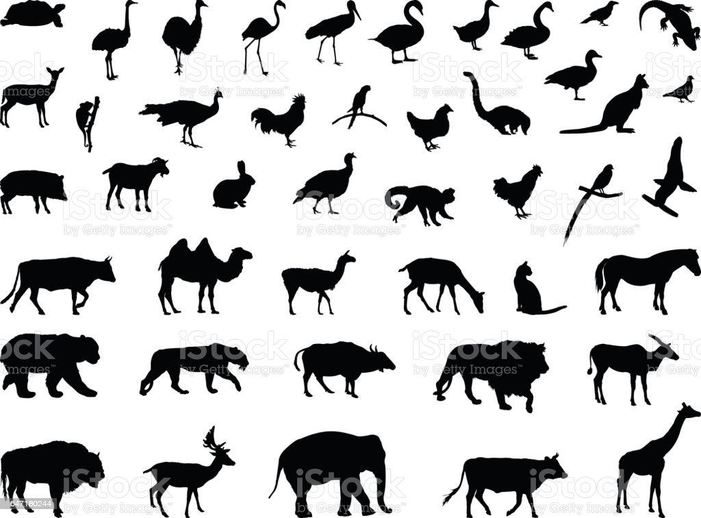 Various animals silhouette vector art illustration