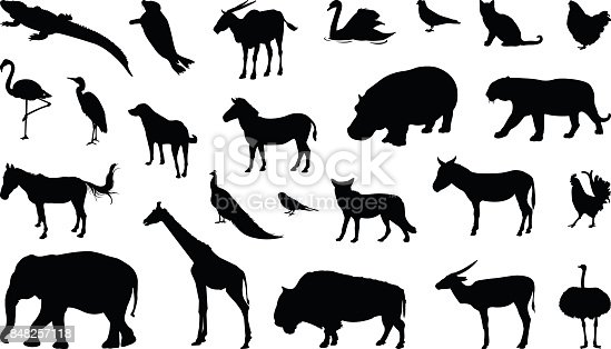 vector illustration of various animals silhouette