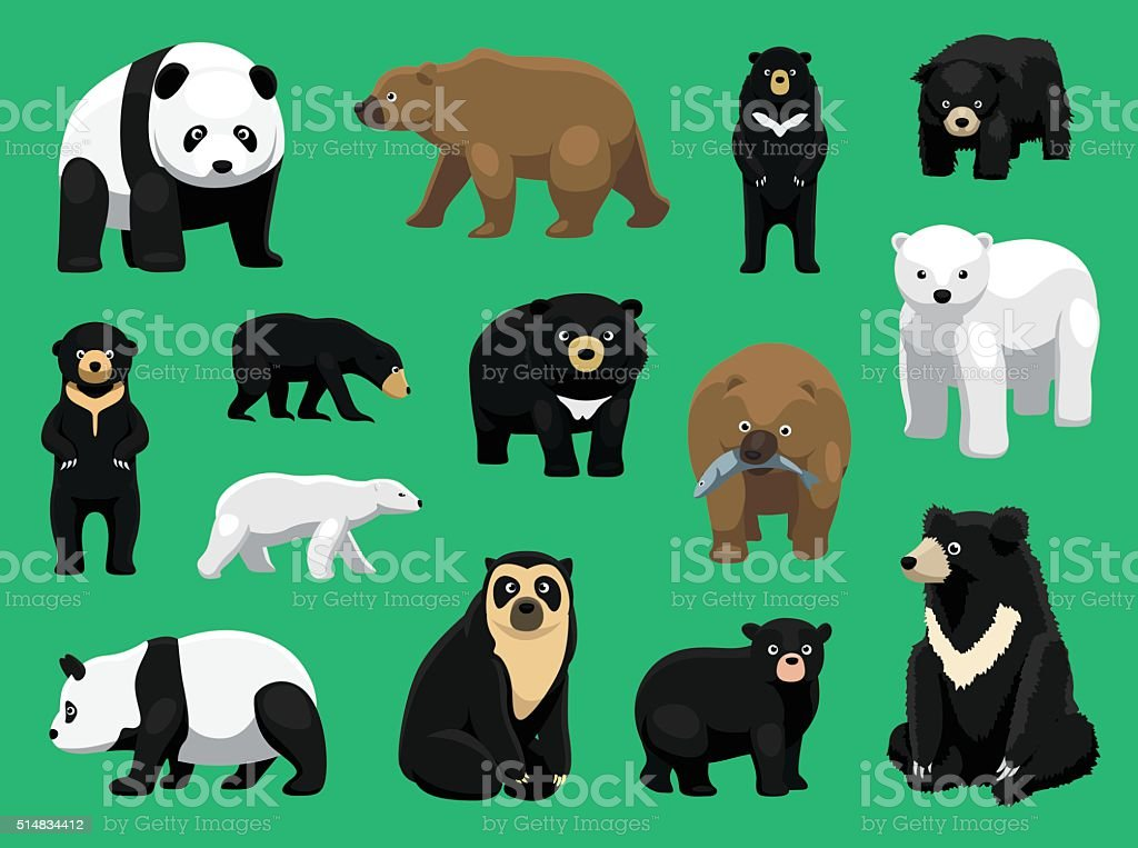 Various Bears Cartoon Vector Illustration vector art illustration