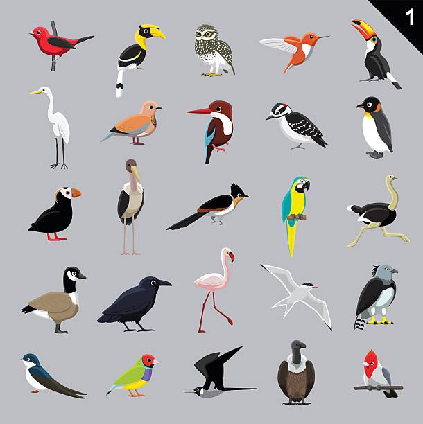 さまざまな鳥カットイラスト、ベクトルイラスト 1 - 鳥点のイラスト素材/クリップアート素材/マンガ素材/アイコン素材