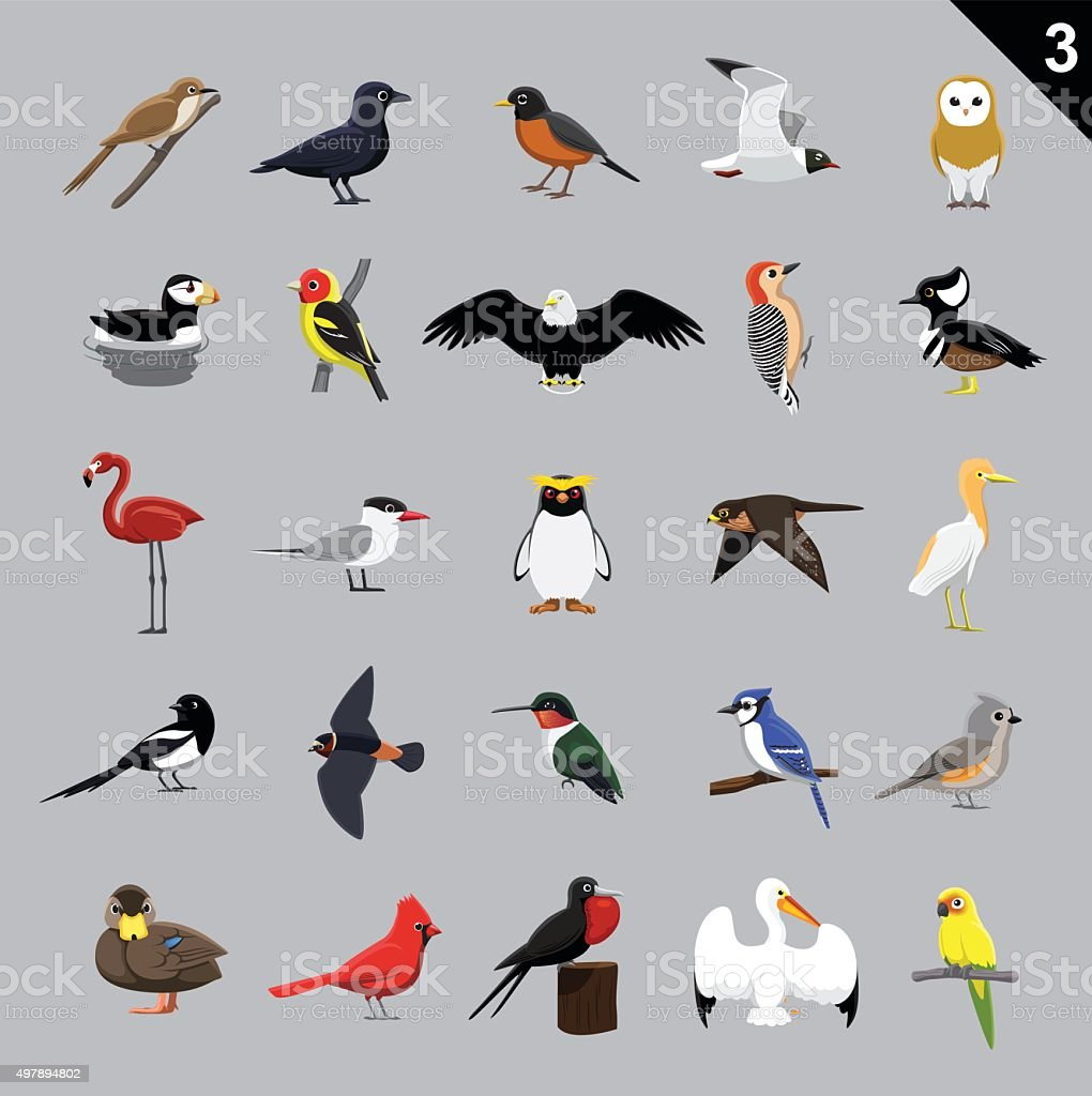 Various Birds Cartoon Vector Illustration 3 vector art illustration