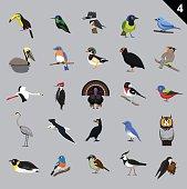 Various Birds Cartoon Vector Illustration 4
