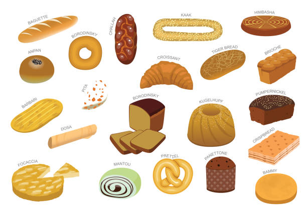 illustrazioni stock, clip art, cartoni animati e icone di tendenza di various bread kind from around the world cartoon vector - panettone