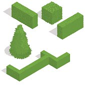various bushes isometric set . Vector illustration.