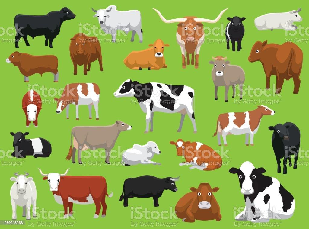 Various Cow Bull Cattle Poses Vector Illustration vector art illustration