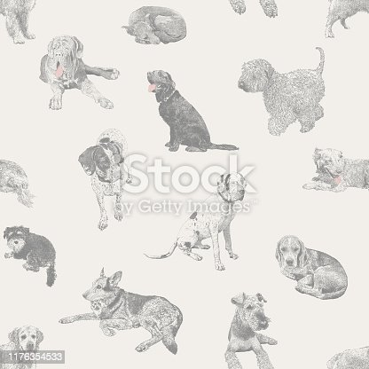 istock Various Dogs Pets Seamless Repeat Pattern 1176354533