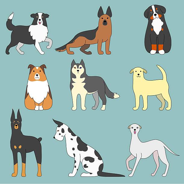 various dogs vector art illustration