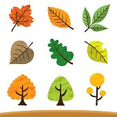It is an illustration of leaves of various colors and shapes.