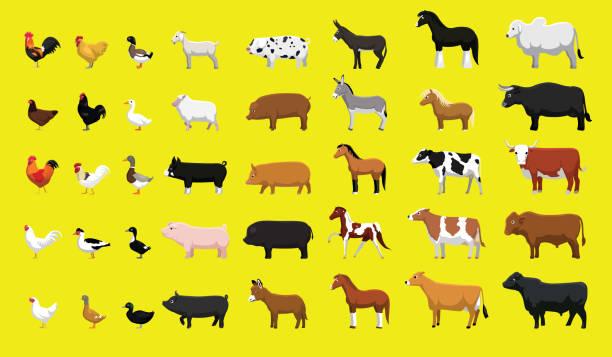 stockillustraties, clipart, cartoons en iconen met diverse boerderij dieren side view cartoon vector illustratie set - pig farm