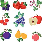 A vector illustration of various fruits icons.