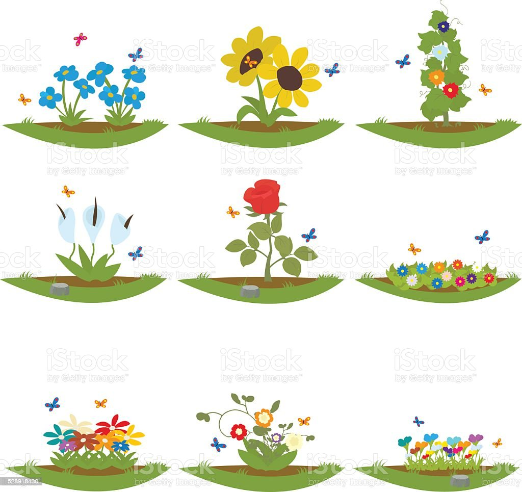 Various Garden Plants And Flowers Grow On The Soil Royalty Free