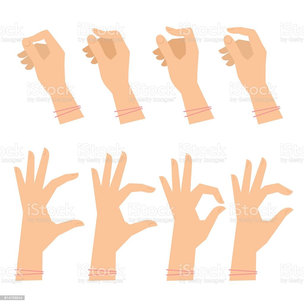 Various gestures of female hands on a white background. vector art illustration