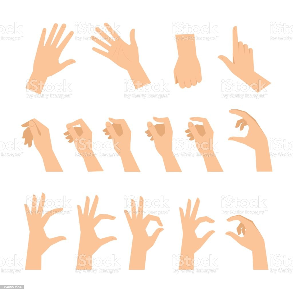Various gestures of human hands isolated on a white background.