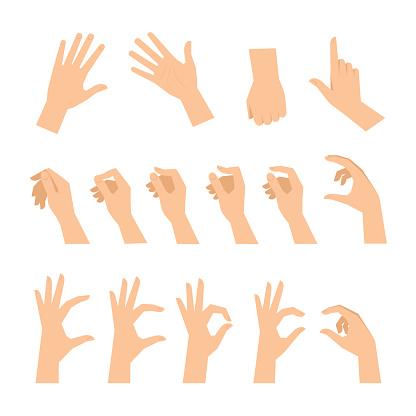 Verschillende Gebaren Van Mensenhanden Geïsoleerd Op Een Witte Achtergrond Stockvectorkunst en meer beelden van Aanraken