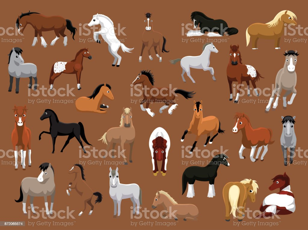 Various Horse Poses Cartoon Vector Illustration - Royalty-free Agriculture stock vector