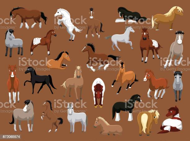 Various Horse Poses Cartoon Vector Illustration Stock Illustration - Download Image Now