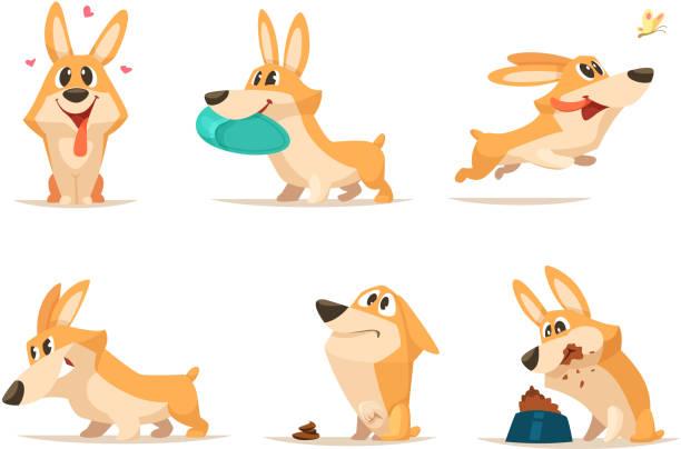 ilustrações de stock, clip art, desenhos animados e ícones de various illustrations of funny little dog in action poses - happy dog