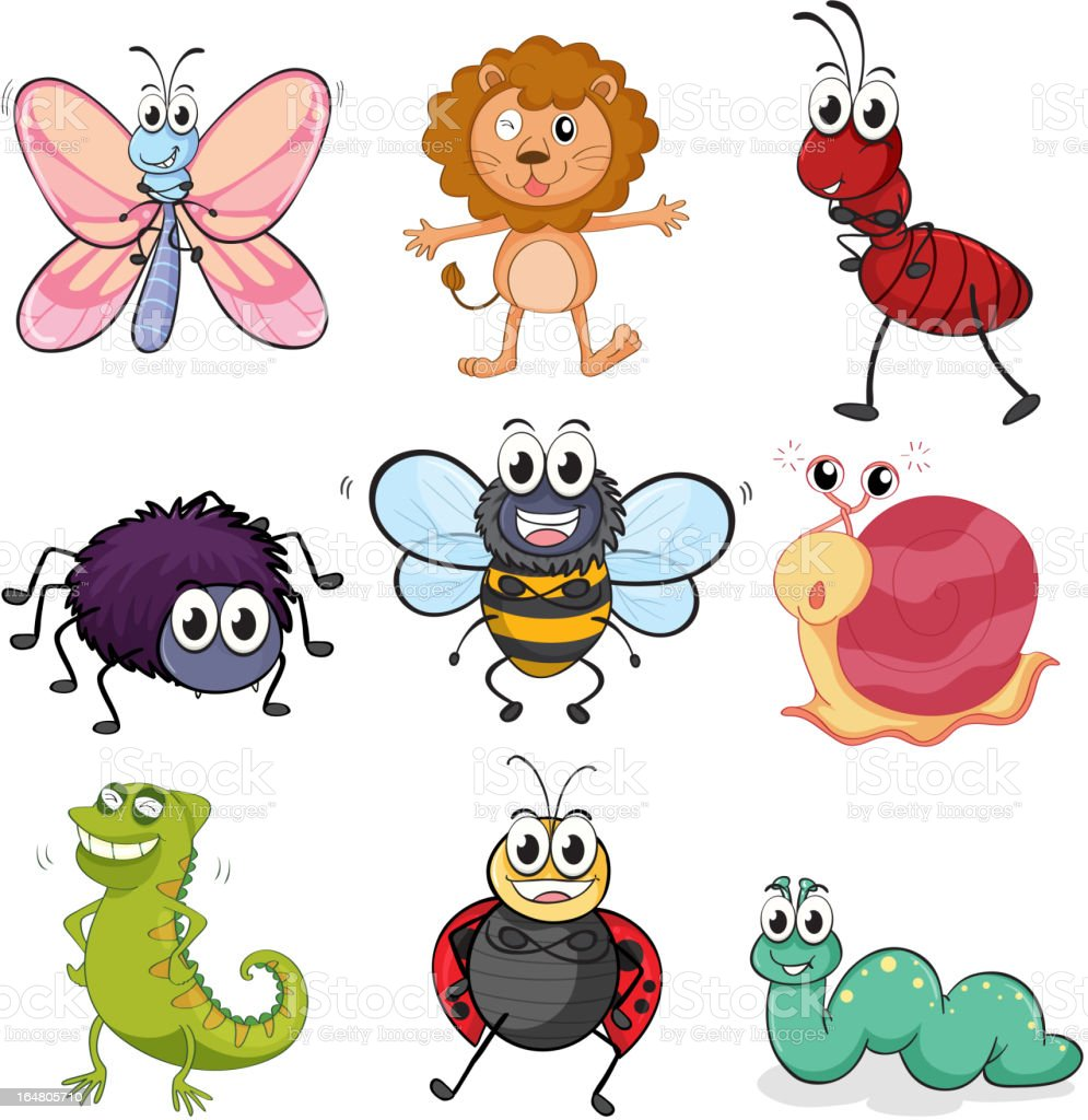 Various insects and animals royalty-free stock vector art