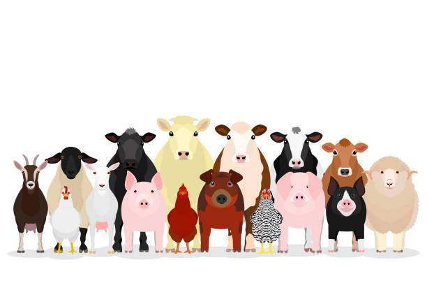 各種家畜グループ ベクターアートイラスト