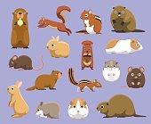 Various Rodents Cartoon Vector Illustration