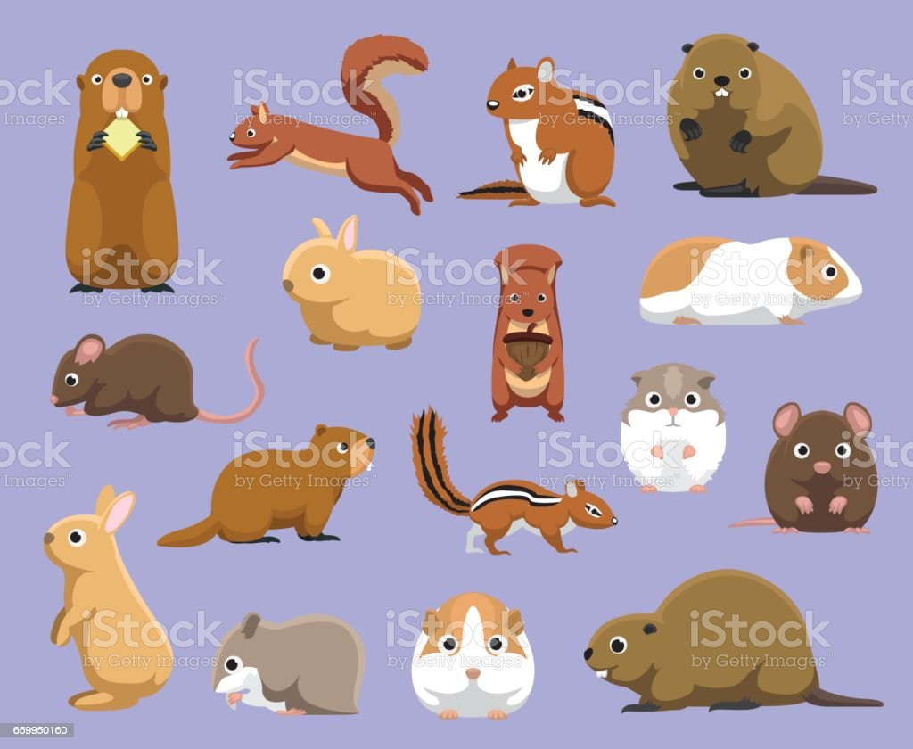 Various Rodents Cartoon Vector Illustration - Illustration vectorielle