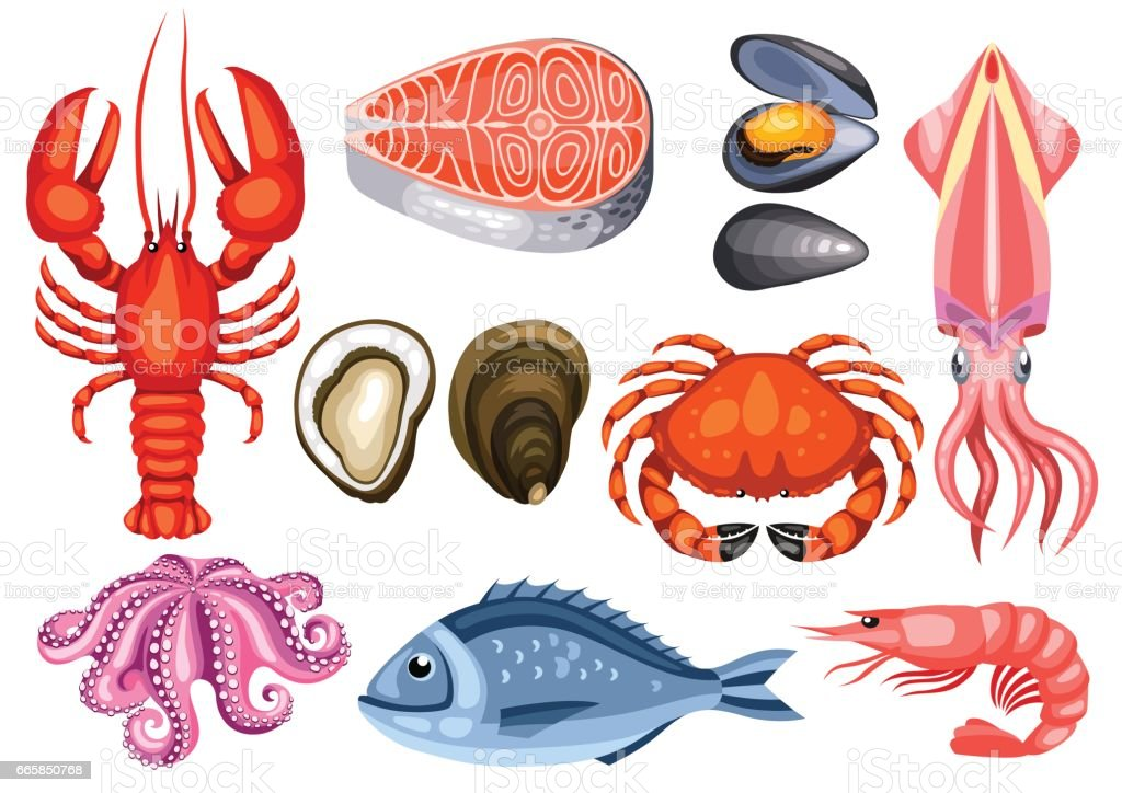 Various seafood set. Illustration of fish, shellfish and crustaceans vector art illustration