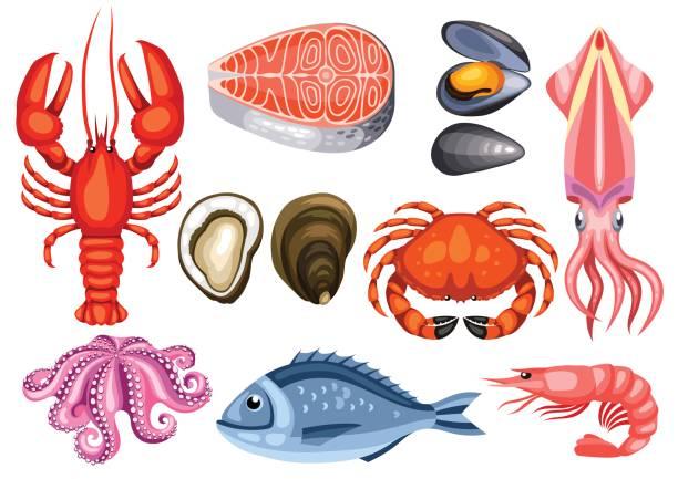 ilustraciones, imágenes clip art, dibujos animados e iconos de stock de conjunto de diversos mariscos. ilustración de pescados, mariscos y crustáceos - pescado y mariscos