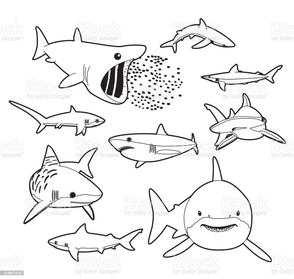 Varios Tiburones Dibujos Animados Vector Ilustración Monocromo ...