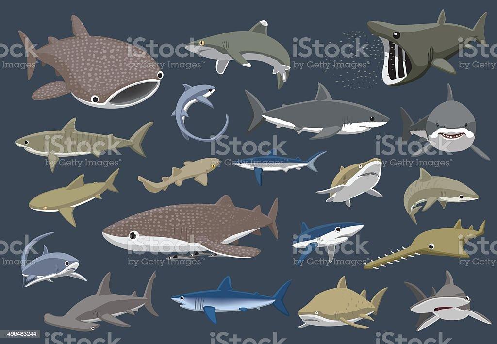 Various Sharks Set Cartoon Vector Illustration Animal Cartoon EPS10 File Format 2015 stock vector