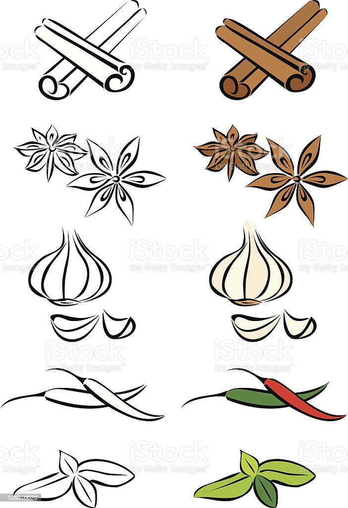 Various spices vector illustration royalty-free stock vector art