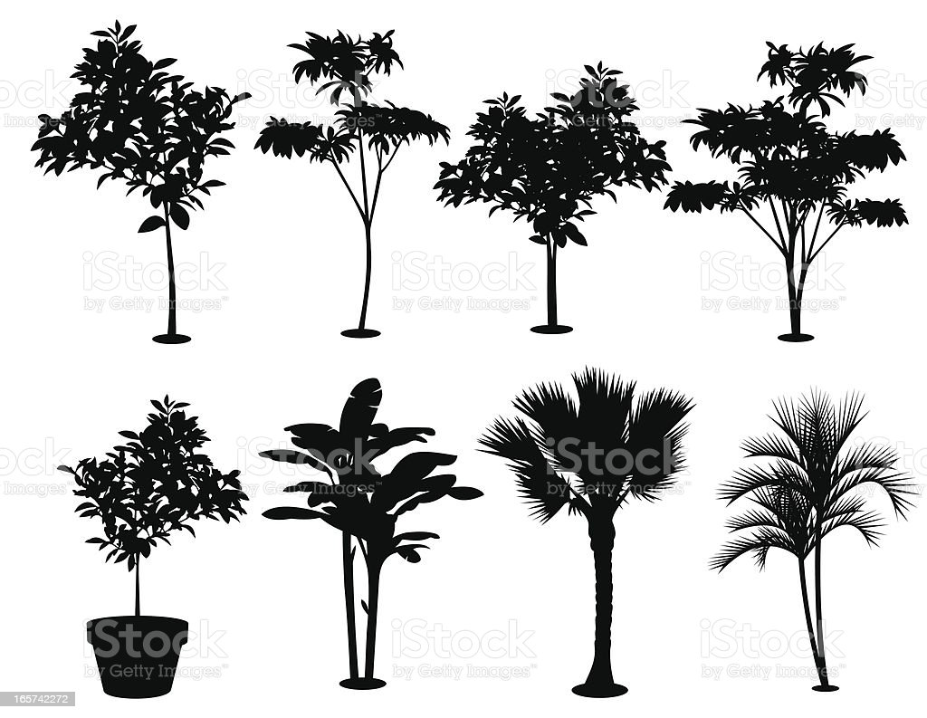 Various Trees Silhouettes vector art illustration
