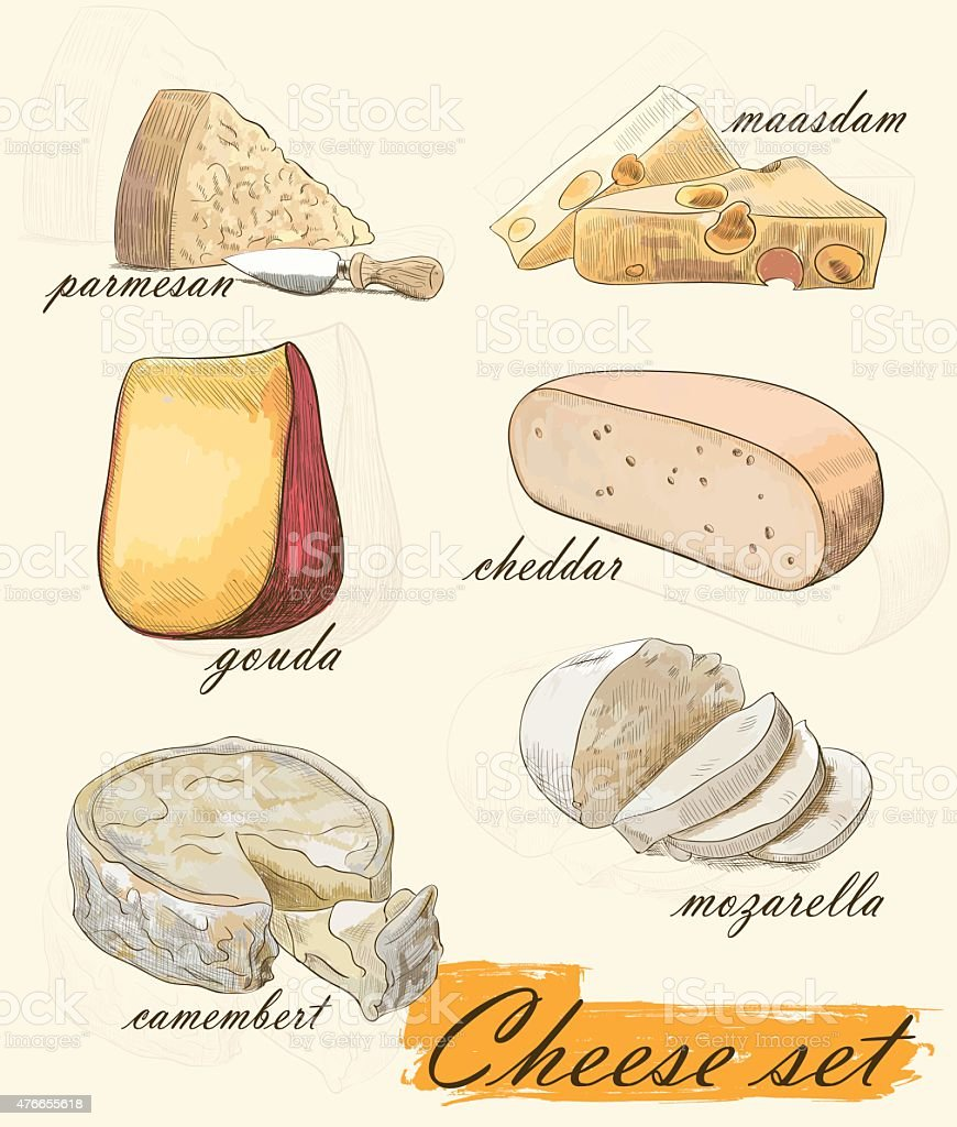 various types of cheese vector art illustration