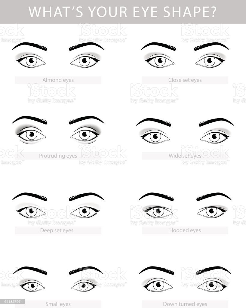 Various Types Of Woman Eyes Vector Set Stock Vector Art ...
