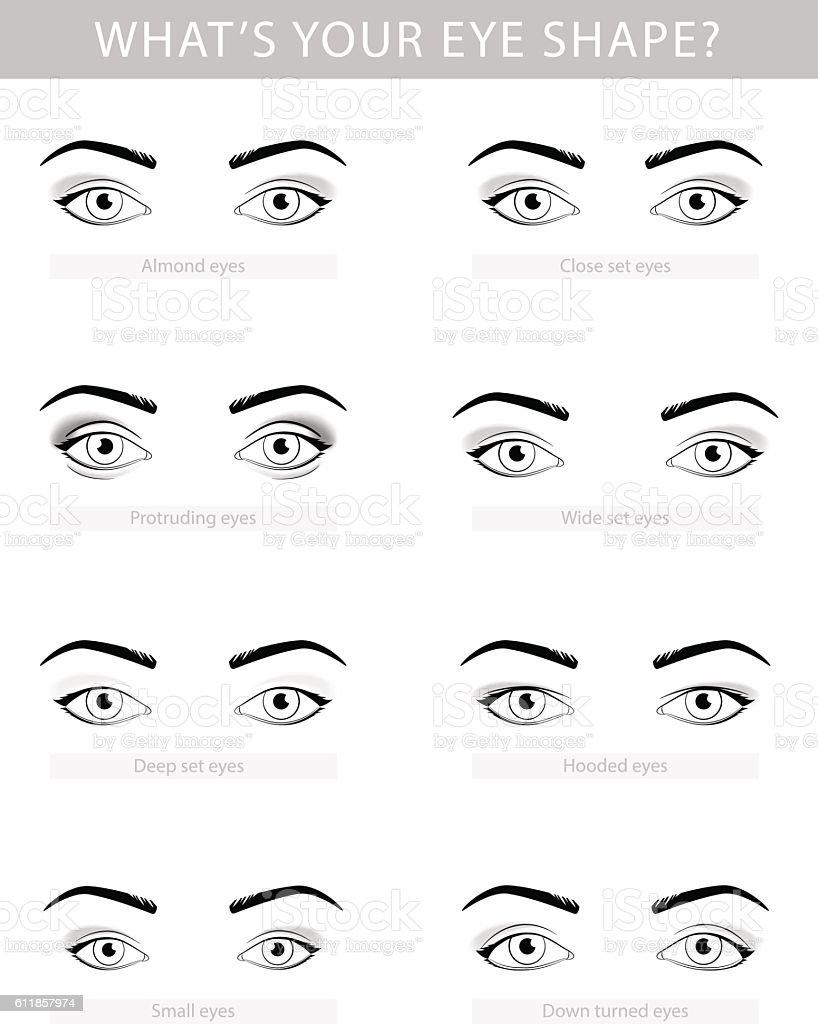 Various types of woman eyes, vector set vector art illustration