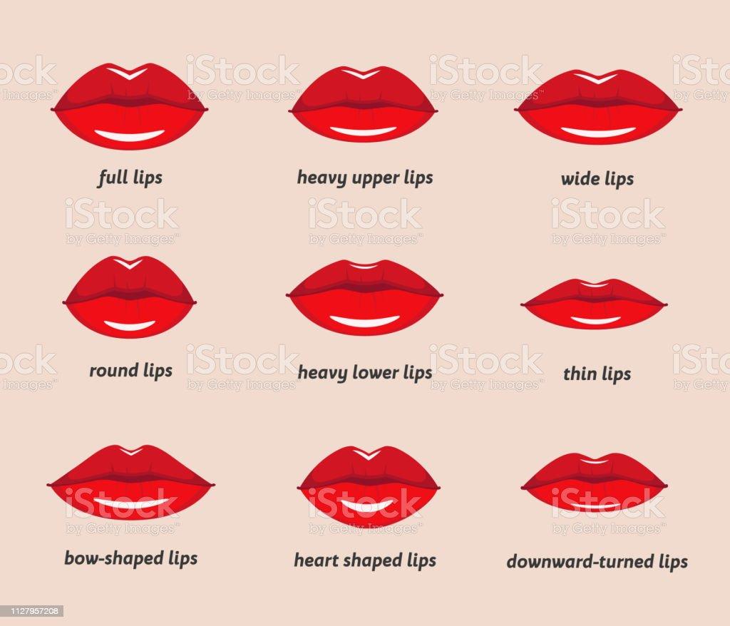 Verschillende Soorten Vrouw Lippen Stockvectorkunst en meer beelden van  Menselijke lippen - iStock