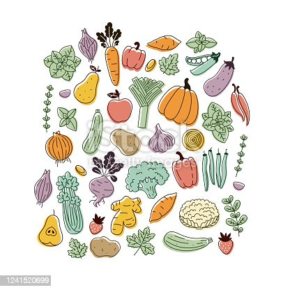 Various vegetables collection. Linear graphic. Scandinavian minimalist style. Healthy food design.