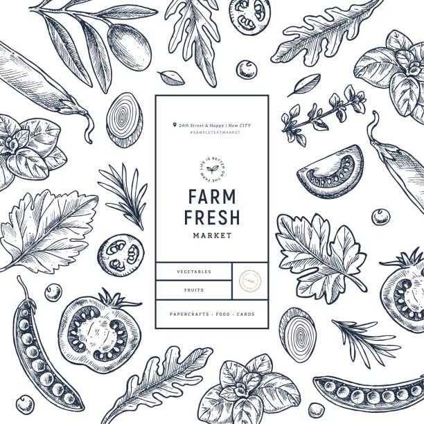 ilustrações de stock, clip art, desenhos animados e ícones de various vegetables on white background. growing concept. organic fresh vegetables. packaging design template. - mediterranean food