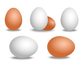 Vector 3d realistic white and brown eggs. Isolated eggs with shadow on white background. Eggs mockup for your Easter poster design