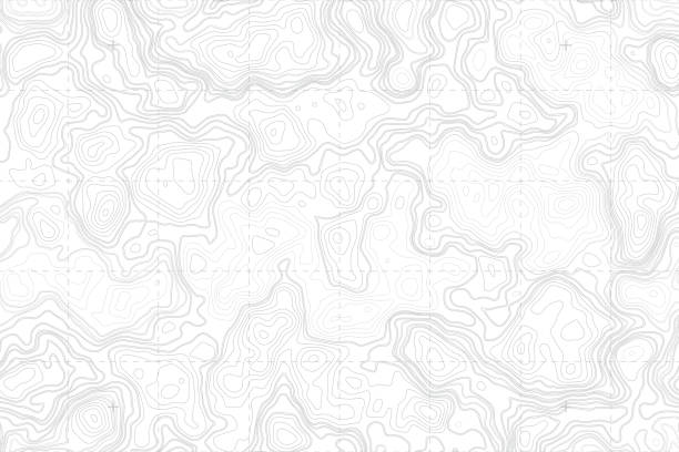 Vector Abstract Blank Topographic Contour Map Abstract Blank Detailed Topographic Contour Map Subtle White Vector Background contour line stock illustrations