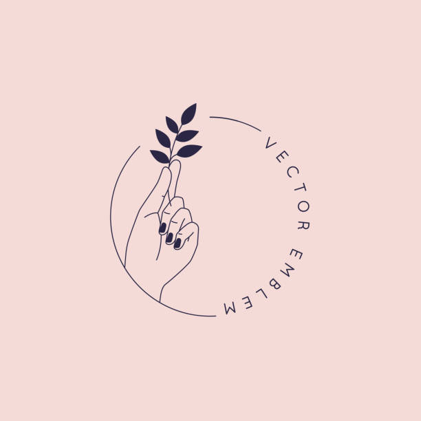 Vector abstract logo and branding design template in trendy linear minimal style - hand holding leaf- concept for natural beauty vector art illustration