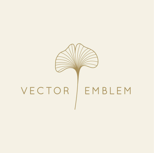 Vector abstract logo design template in trendy linear minimal style - ginkgo biloba leaf vector art illustration