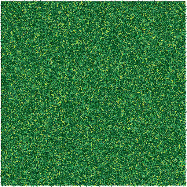 Vector abstract texture with green lawn grass for design background Vector abstract texture with green lawn grass for design backgrounds turf stock illustrations
