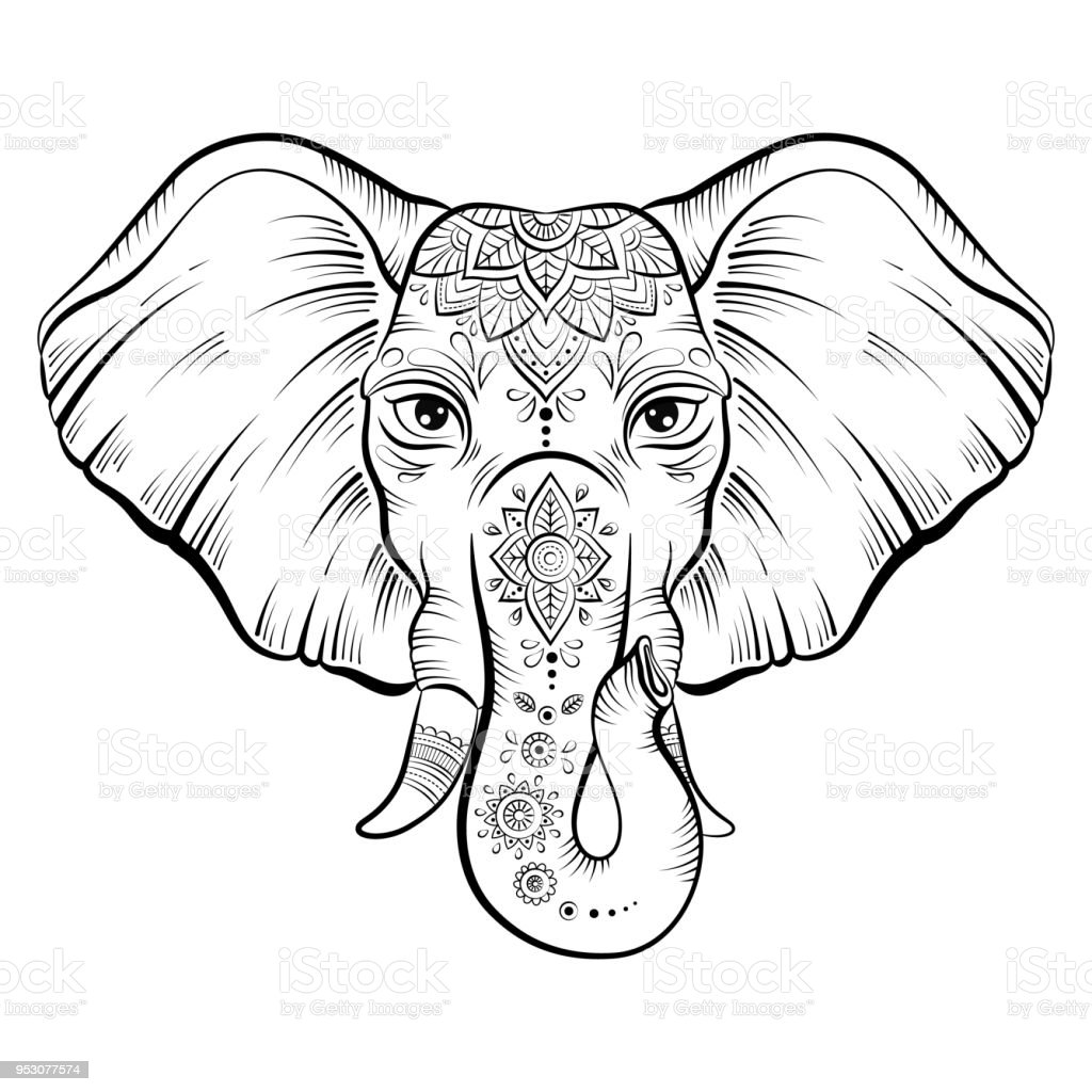 Vector african elephant in sketch style