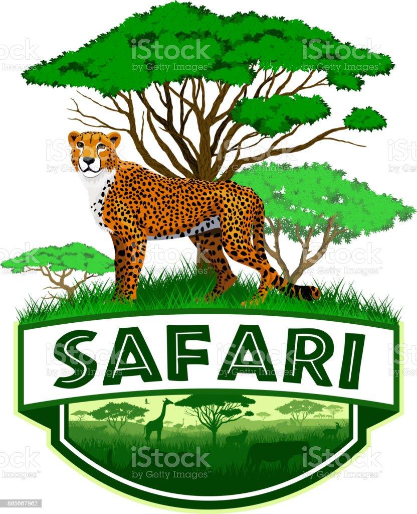 Cat Persian Cartoon Vector Illustration Stock Vector ... |Iranian Cheetah Vector