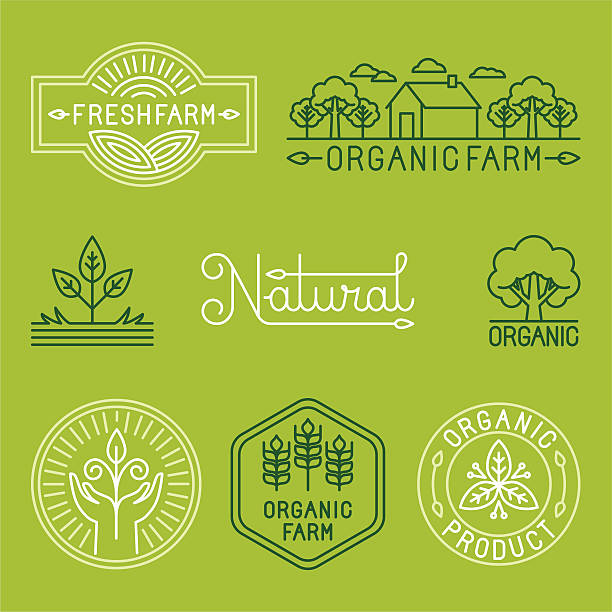 vector agriculture and organic farm line logos - corn field stock illustrations, clip art, cartoons, & icons